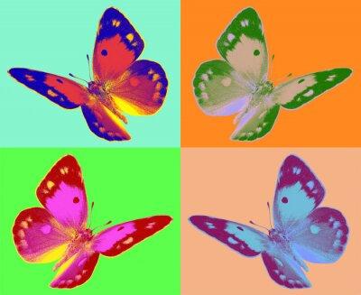 Fototapet popkonst Colias fjäril