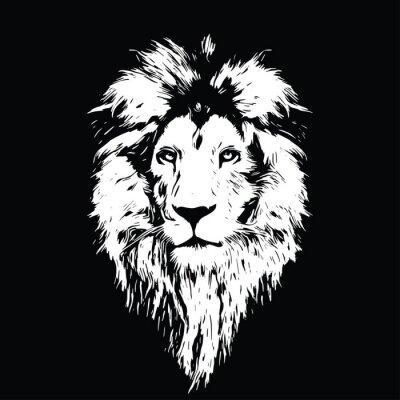 Fototapet Porträtt av en vacker lejon, lejon i mörkret