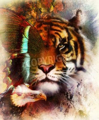 Fototapet porträtt tiger med örn och fjärilsvingar .. Färg abstrakt bakgrund och prydnad, vintage struktur. djur koncept