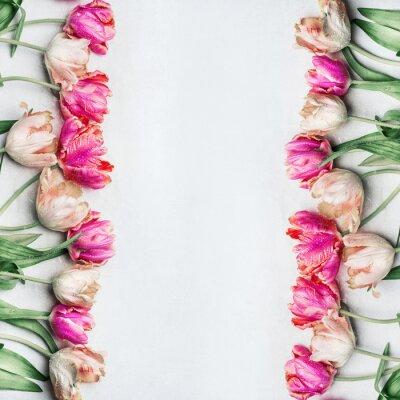Fototapet Pretty pastellfärger tulpaner med vattendroppar, blommig ram, ovanifrån. Vårblommor koncept