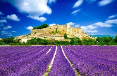 Fototapet Provence - lavendel fält i Frankrike