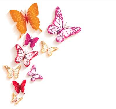 Fototapet Realistiska färgglada fjärilar Isolerade för Spring