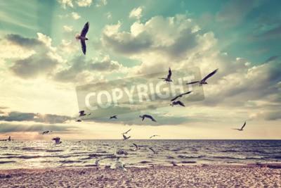 Fototapet Retro stiliserad strand med flygande fåglar vid solnedgången.