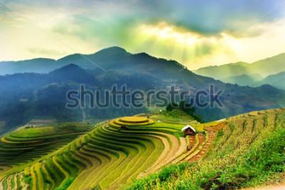 Fototapet Rice fields on terraced of Mu Cang Chai, YenBai, Vietnam. Vietnam landscapes.