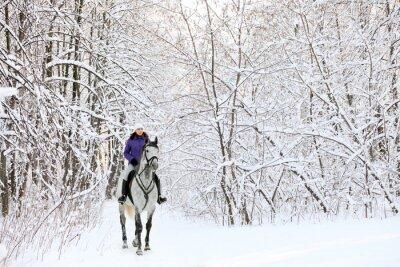 Fototapet Rider på häst på kanten av snötäckta skogen på vintern