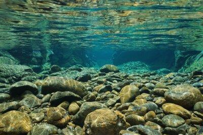 Fototapet Rocks under vatten på flodbädden med tydlig sötvatten, Dumbea flod, Grande Terre, Nya Kaledonien