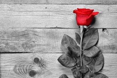 Fototapet Röd ros på svart och vitt trä bakgrund