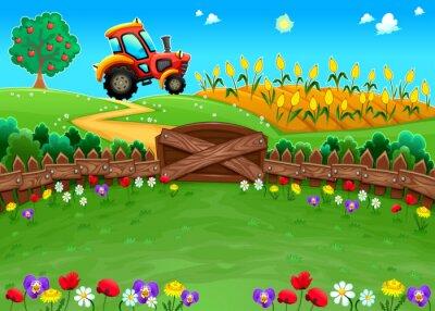 Fototapet Rolig landskap med traktor och majsfält.