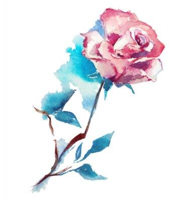 Fototapet ros vattenfärg skissar. Vektor illustration.