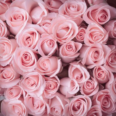 Fototapet rosa blomma bukett vintage bakgrund