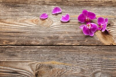 Fototapet Rosa orkidé blommor på en trä bakgrund