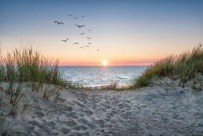 Fototapet Sand dunes on the beach at sunset