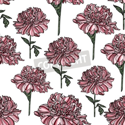 Fototapet Seamless floral pattern with peony on white background.  Vector illustration. Typography design elements for prints, cards, posters, products packaging, branding.