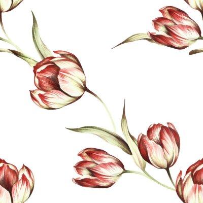 Fototapet Seamless tulpaner. Hand rita akvarellillustration