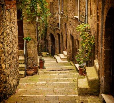Fototapet Smal gata av medeltida tuff stad Pitigliano med gröna växter och gatsten trappor, resa Italien tappning bakgrund
