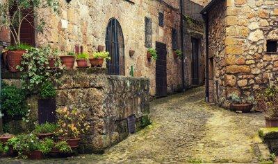 Fototapet Smal gata av medeltida tuff stad Sorano med gröna växter och kullersten, resor Italien bakgrund