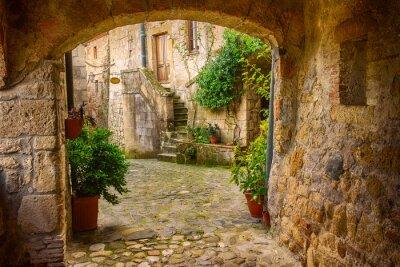 Fototapet Smal gata av medeltida tuff stad Sorano med valv, gröna växter och kullersten, reser Italien bakgrund