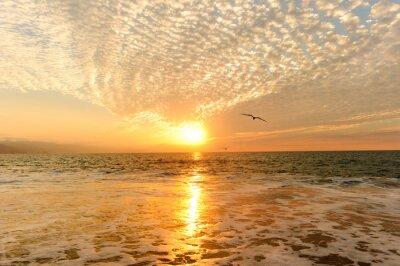 Fototapet Solnedgång Ocean Fåglar