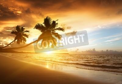 Fototapet solnedgång på stranden i Karibiska havet