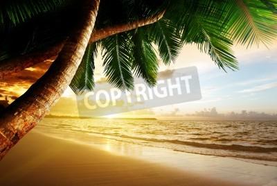 Fototapet soluppgång på karibisk strand