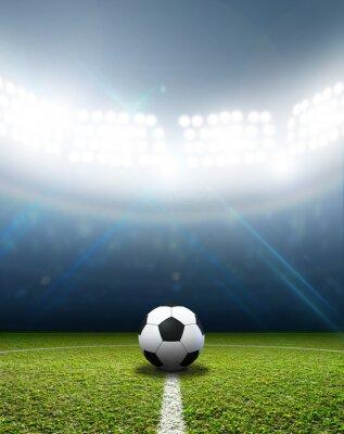 Fototapet Stadium och fotboll
