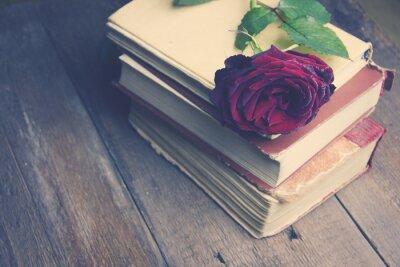 Fototapet steg på böcker