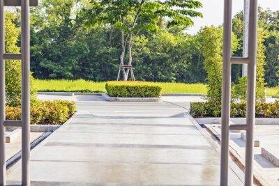 Fototapet Stepping konkret väg i en lugn Green Garden