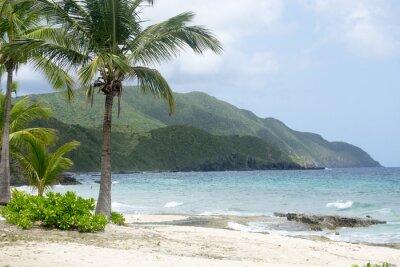 Fototapet Stranden och bergen i St Croix