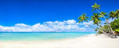 Fototapet Stranden panorama med hav och palmer
