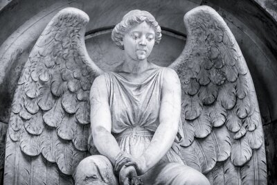 Fototapet svart och vitt skott av en ängel.