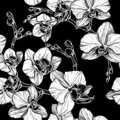 Fototapet svart och vitt sömlösa mönster med handen ritning orkidé