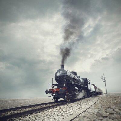 Fototapet svart tåg