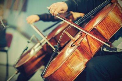 Fototapet Symfoniorkester på scen, händer spelar cello
