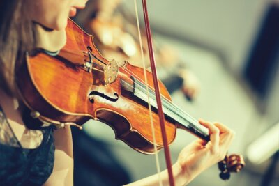Fototapet Symfoniorkester på scen, händer spelar fiol