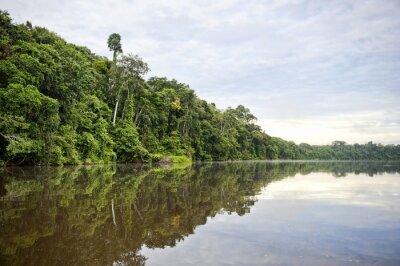 Fototapet Tambopata Province