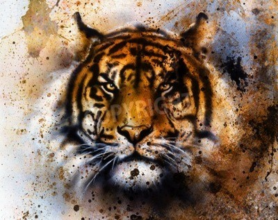 Fototapet tiger collage på färg abstrakt bakgrund, rost struktur, vilda djur, ögonkontakt.