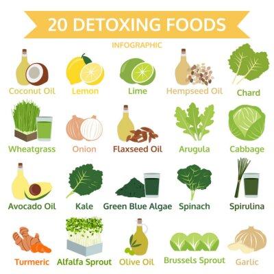 Fototapet tjugo avgiftning livsmedel, info grafisk platta mat, vektor