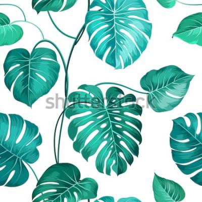 Fototapet Topiska palmblad över vita, sömlösa mönster. Vektorillustration.