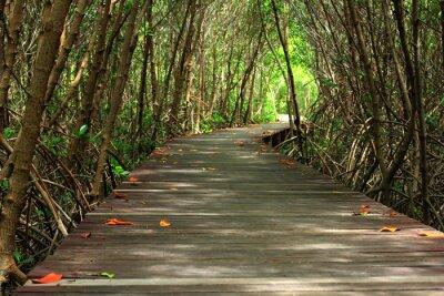 Fototapet träbro i skogen