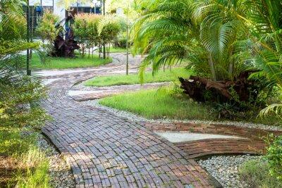 Fototapet Trädgård gång sätt gjord av tegel i den trevliga morgonljuset