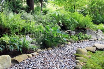 Fototapet Trädgårdsskog med skogsmark, kantad med Hosta och ormbunke.