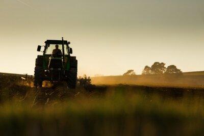 Fototapet Traktor i solnedgång plöjer fältet