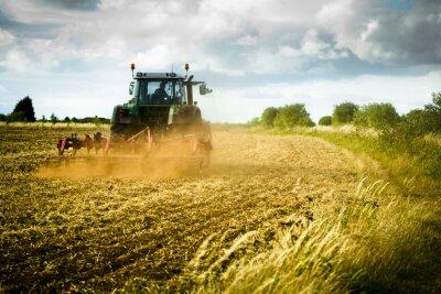 Fototapet Traktor plogar fält
