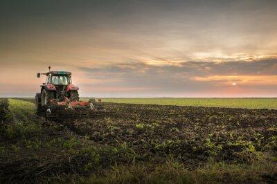 Fototapet Traktor plöjer ett fält