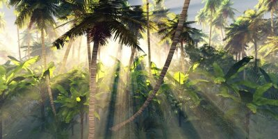 Fototapet Tropical forest in the morning sun, jungle in the fog, palm trees in the haze, 3D rendering