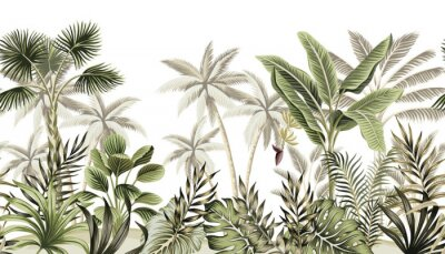 Fototapet Tropical vintage botanical landscape, palm tree, banana tree, plant floral seamless border white background. Exotic green jungle wallpaper.
