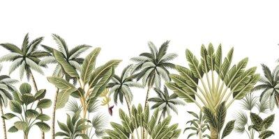 Fototapet Tropical vintage botanical palm trees, banana tree floral seamless border white background. Exotic jungle wallpaper.
