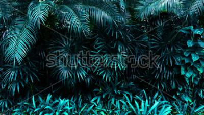 Fototapet tropisk lövskog glöd i mörka bakgrunden. Hög kontrast.