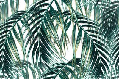 Fototapet Tropisk palm lämnar sömlös vektor blommönster bakgrund