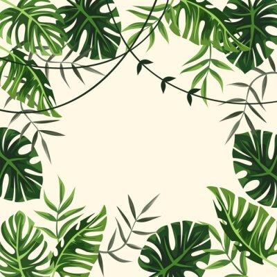 Fototapet tropisk ram. bakgrund. lövverk. vektor illustration